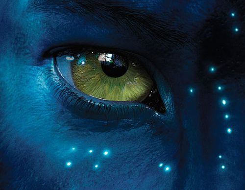 movie review avatar james cameron the panic manual  tn avatar movie photos